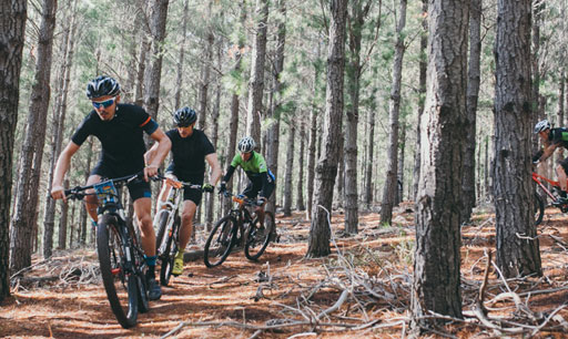 Western Cape Mountain Bike Urlaub