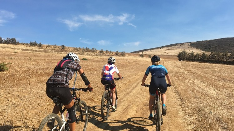 Weekly Rides Term 2